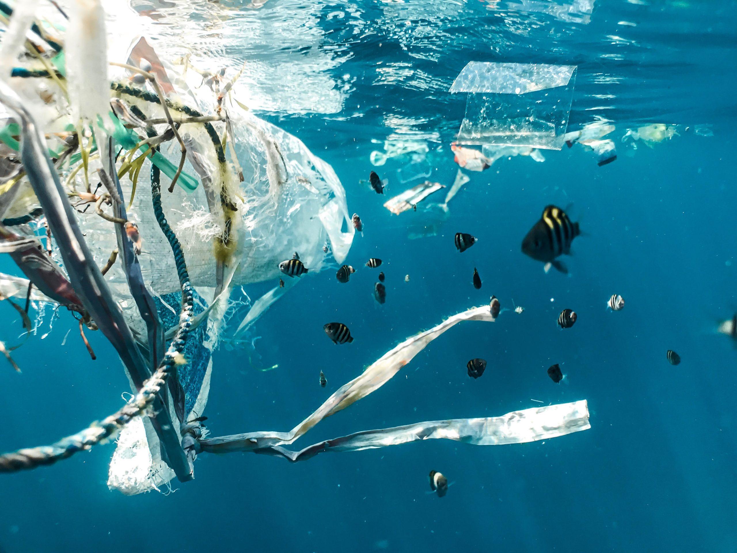 Transformer les déchets en énergie, la solution quand ils ne peuvent être recyclés